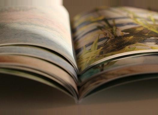 Digitaldruck Buchmarkt