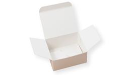 Faltschachtel mit Automatikboden - Verpackung aus Karton & Pappe direkt vom Hersteller, ab 1 Stück