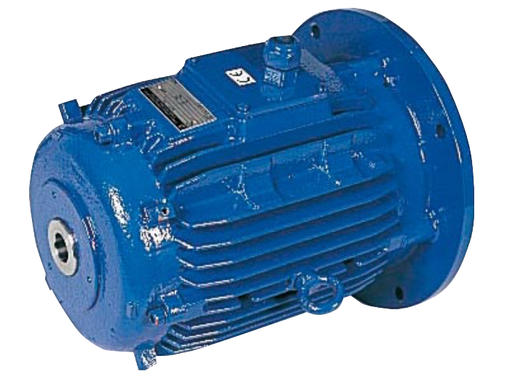 Hohlwellenmotoren für Rührwerke