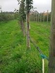 Bewässerungstechnik für Gartenbau & Landwirtschaft
