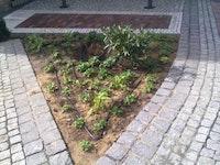 Bewässerungstechnik für Gärten & Parkanlagen