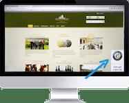 Web-Design - Web-Shop