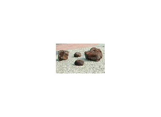 Große Steine für den Galabau