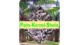 PKS - Palm Kernel Shells