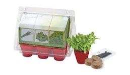 Greenhouse Kräuterküche, Basilikum, Kresse, Zitronenmelisse, 1-4 c Digitaldruck inkl.