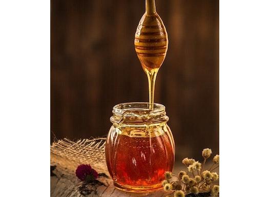 Honig / Bio Honig