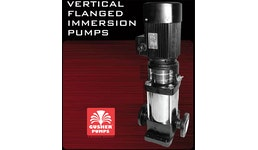Vertical flanged immersion pumps