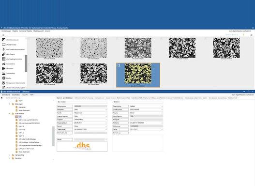 dhs-Bilddatenbank® Software Basismodul Datenbank